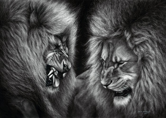 03-Lions-Danguole-Serstinskaja-Animal-Dry-Brush-Technique-Paintings-www-designstack-co