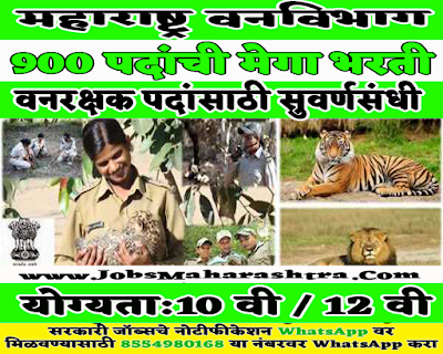Mahaforest Recruitment 2019