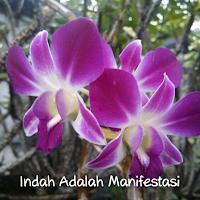 kiat jitu 8 Rahasia Kecantikan Alami Luar Dalam Wanita Muslimah www.kiatjitu.com