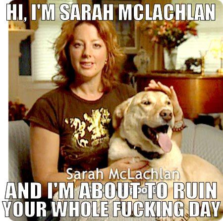 Sad Animal Abuse Quotes