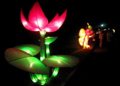 Lampion Flora Taman Pelangi Jogja