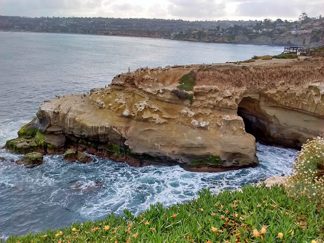 La Jolla Cave and Goldfish Point