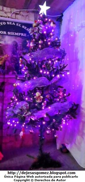 Foto de un Arbol de Navidad con adornos lila por Jesus Gómez