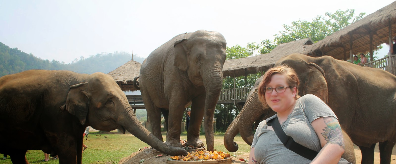 Elephant Nature Park // Thailand // A Suitcase and A Stamp