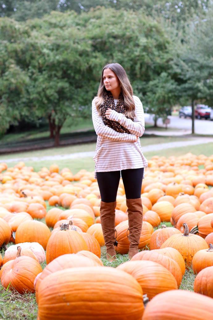 pumpking picking outfit, the girlish blog, girl(ish), amanda sumner