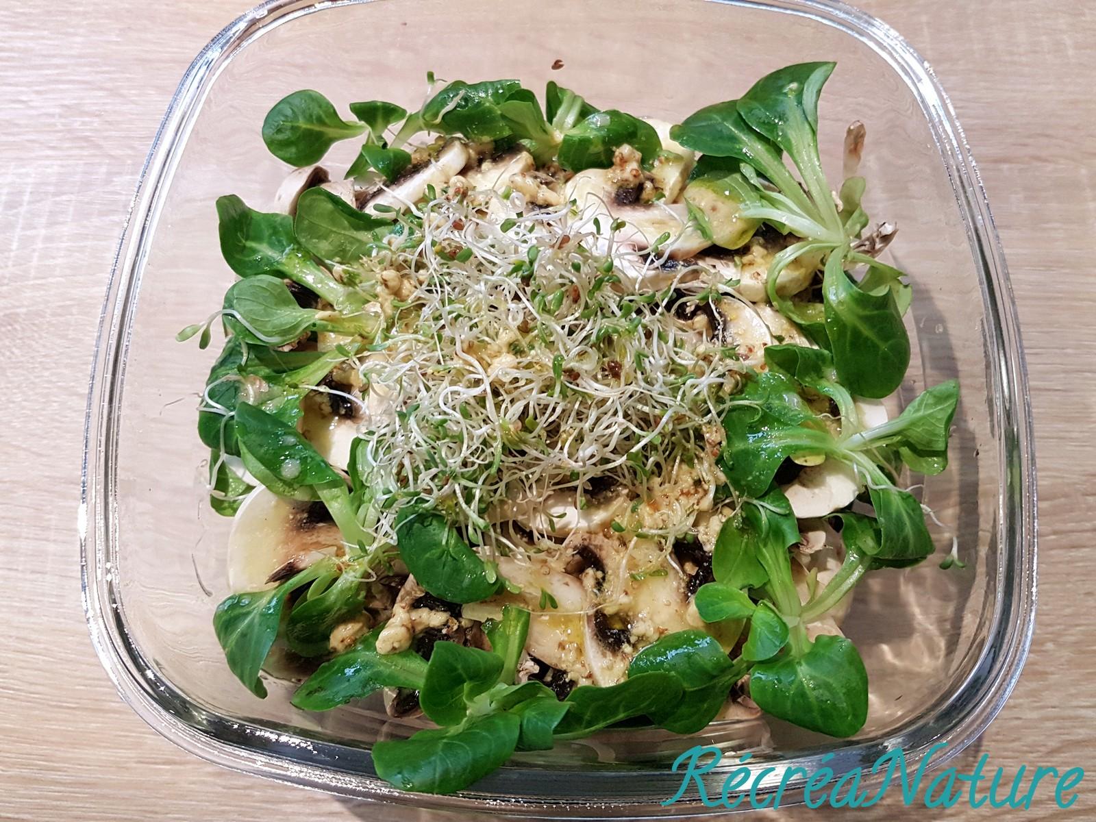 Salade d'Hiver aux Champignons de Paris, à la Mâche et aux Graines Germées - Sauce Citron et ...