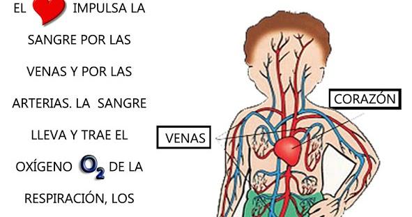 Calcificaciones cerca de las venas mamarias