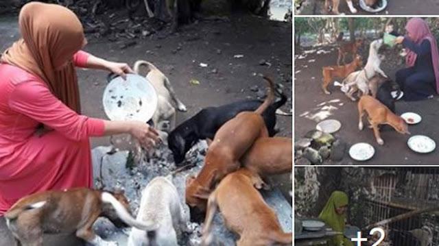 Wanita Berhijab Ini Dibully Karena Anjing, Kok Bisa?