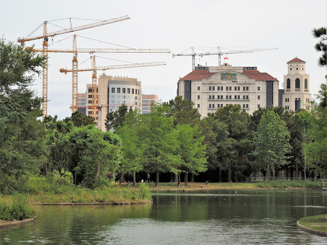 McGovern Lake at Hermann Park - Medical Center Skyline with Construction Cranes