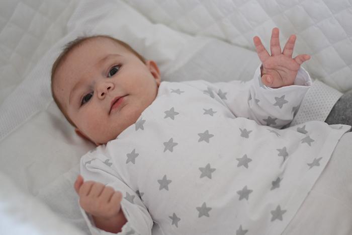 baby Flaminia