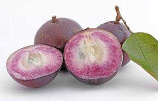 Caimito: La Extraña Fruta Milagrosa Que ¡Te Sorprenderá!