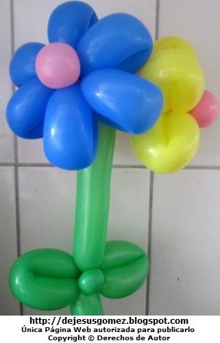 Foto de flores margaritas de color azul y amarillo. Foto de globos por Jesus Gomez