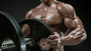 Povoljno proteini
