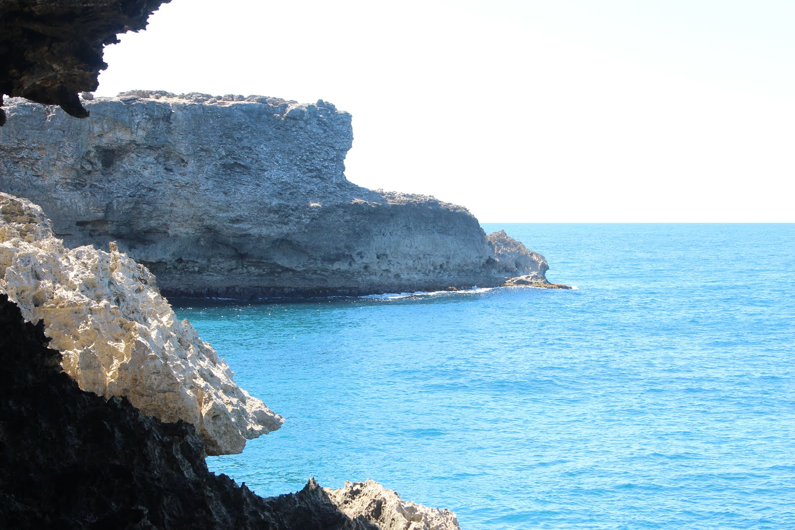 Sea View Animal Flower Cave North Point St Lucy Barbados
