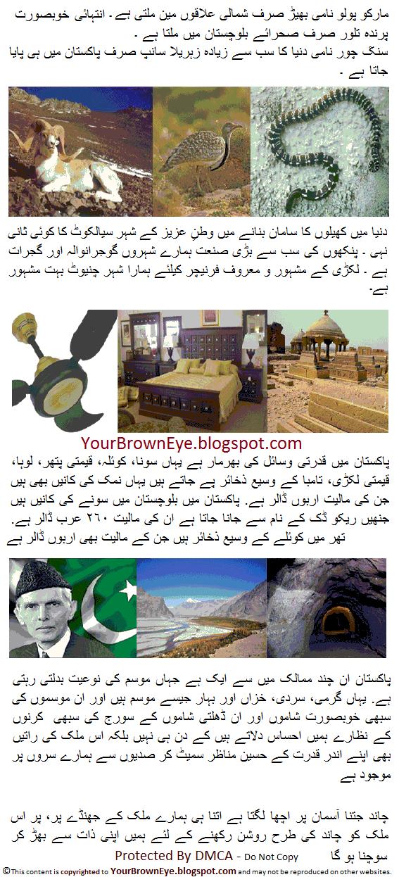 Essay on Earthquake in Pakistan in English Urdu