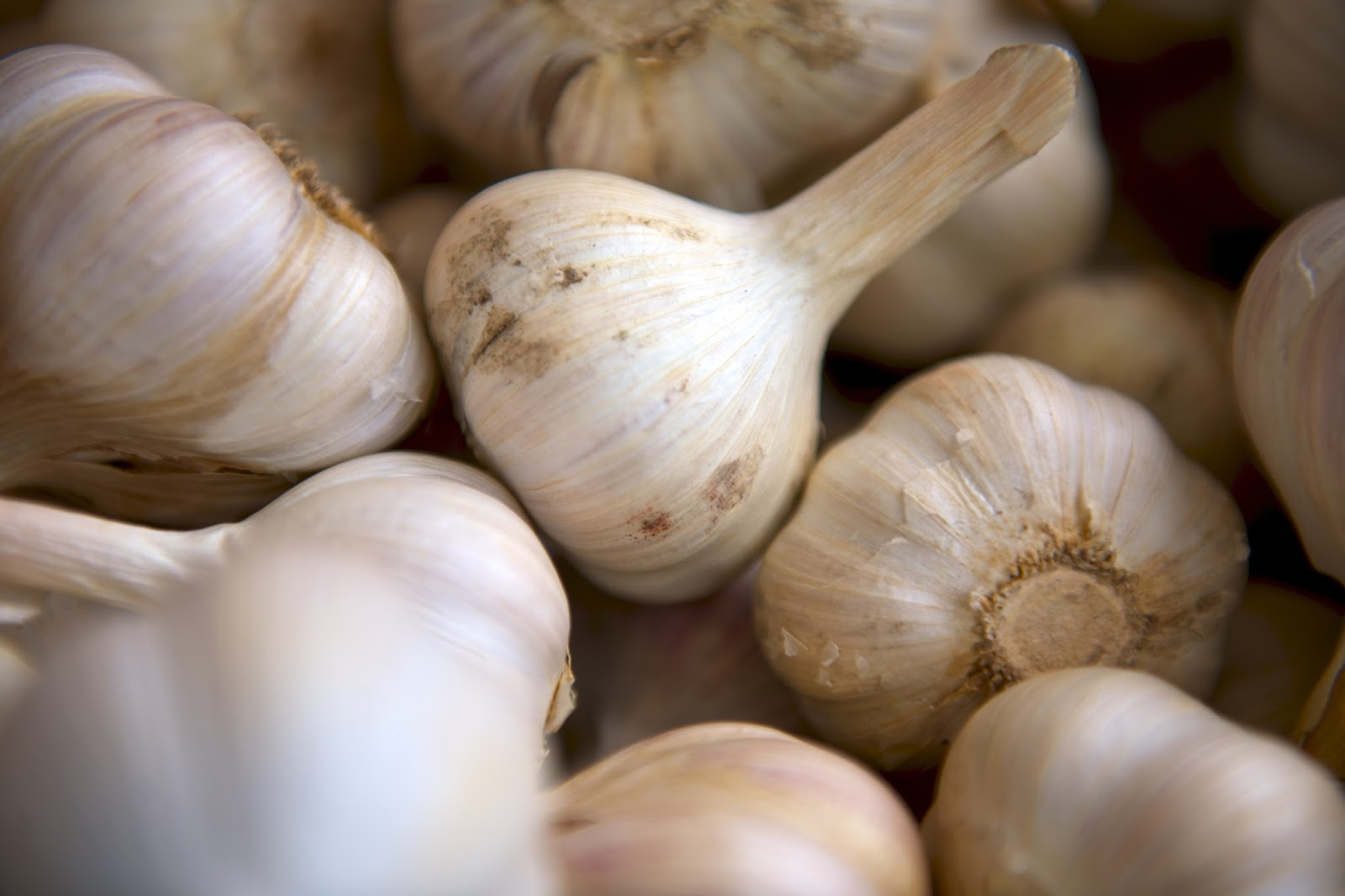 10 tips for the farmer's market; garlic bulbs