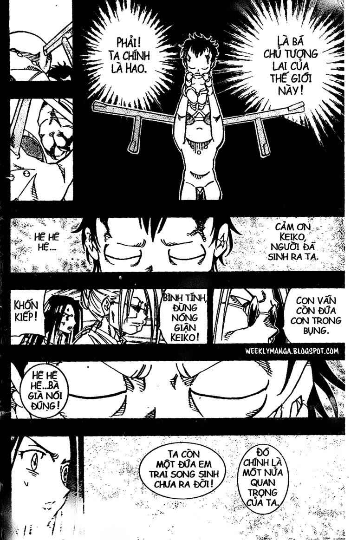 Shaman King [Vua pháp thuật] chap 143 trang 17