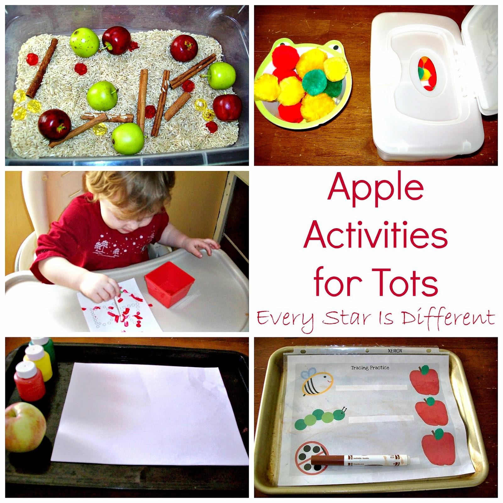 Fall Harvest Week 1 Apples