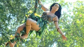 Baixar Musica Roar Katy Perry Grátis