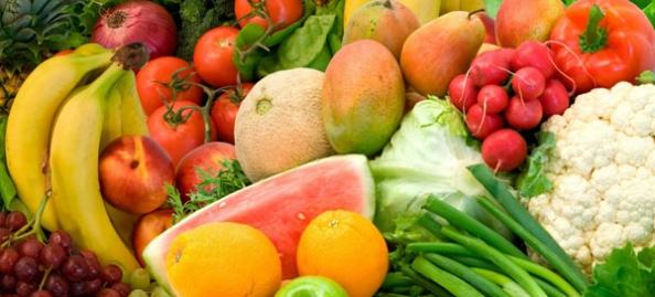 Vegetales y biologia
