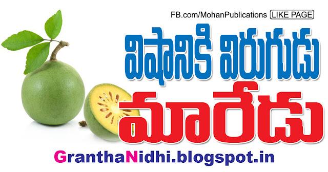 విషానికి విరుగుడు మారేడు! Plant Beal Maredu Fruit Maredu Tree Plant Beal Fruit Plant Beal Tree Bhakthi Pustakalu Bhakti Pustakalu BhakthiPustakalu BhaktiPustakalu