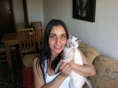 gatito-cariñoso-compañero-ventaja