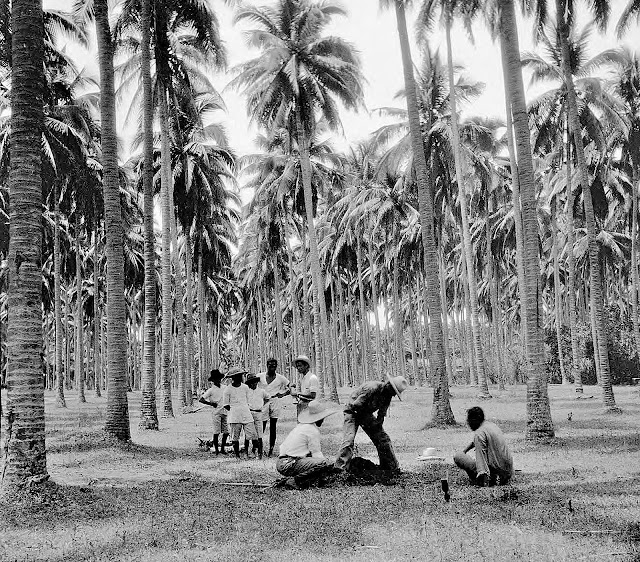 Men taking soil samples in Santo Tomas, 1931.  Image source:  University of Wisconsin at Milwaukee Digital Library.