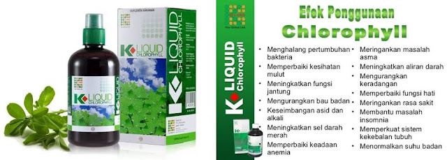 Manfaat Klorofil K Link Untuk Asam Lambung