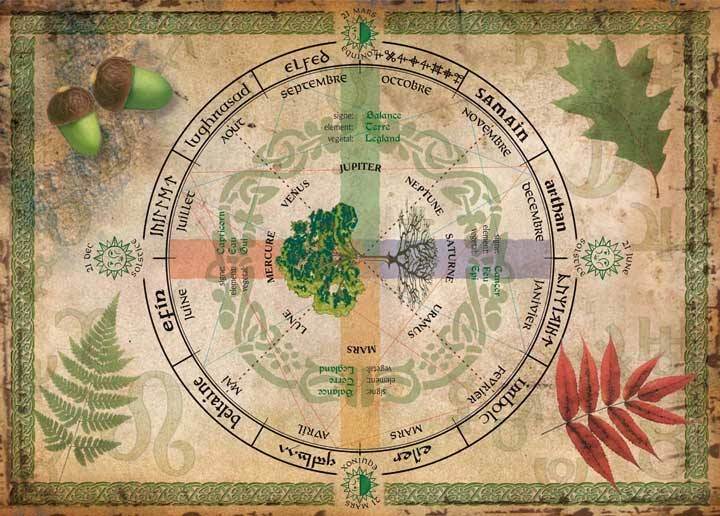Crone Cronicles Celtic Calendar And Astrology Was Based On Trees