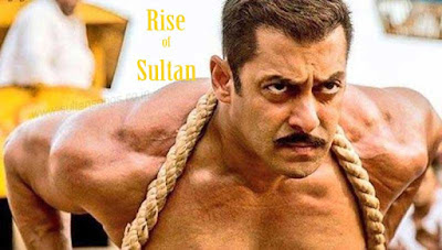 Rise of Sultan, Rise of Sultan Lyrics, Rise of Sultan MP3, Rise of Sultan Video, Sultan, Sultan Wallpaper, Sultan Image, Sultan picture, Salman Khan, Anushka Sharma