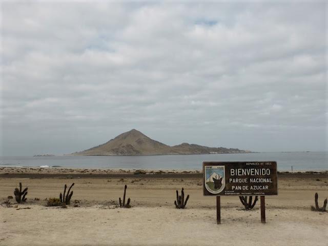 Vista de la Isla Pan de Azucar desde la caseta de la CONAF