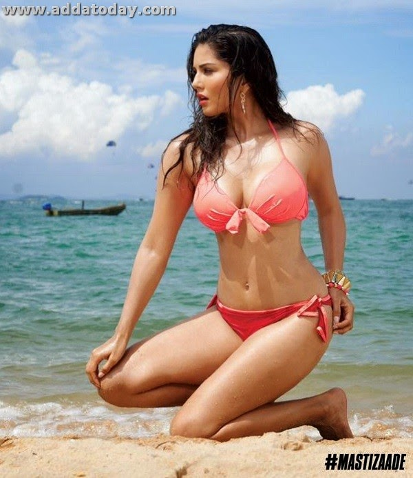 Sunny Leone Upcoming Movies, Hd Wallpapers, Biography -4705