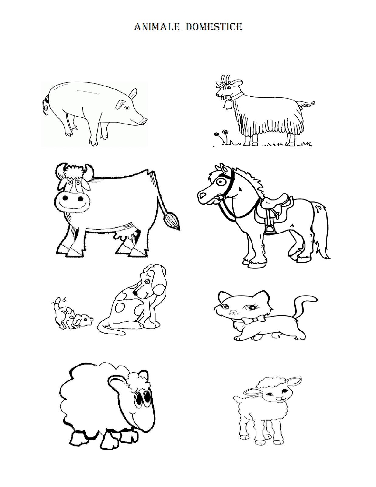 Imagini De Colorat Cu Animale Domestice Fise De Lucru