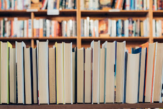 Recommended  Books to Read this November