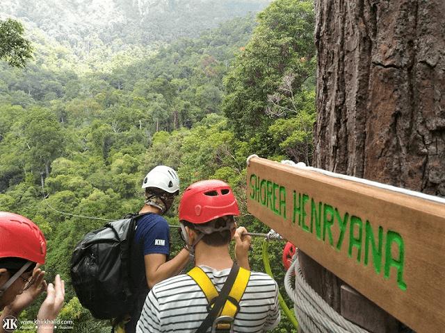 UMGAWA Zipline, UNESCO Geopark Langkawi,