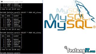 tentangit.com tutorial mysql di cmd