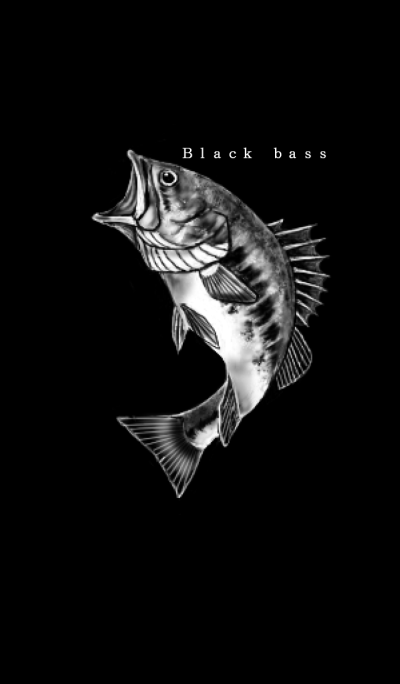 Black bass fishing