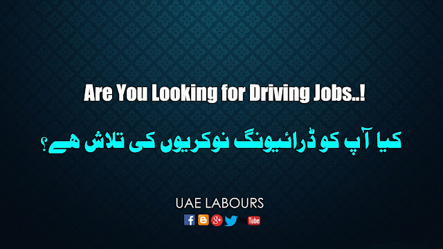 Confirm driving jobs in Dubai, Confirm Driving jobs in Sharjah, UAE Driving jobs sites, best site for driving jobs, driver required, Dubai Drivers vacancies, Driving Vacancies in Gulf,