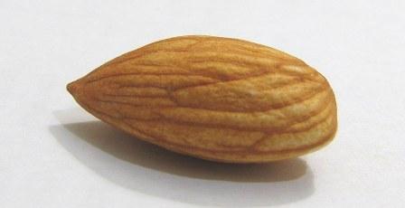 Cara Megolah Kacang Almond Mentah