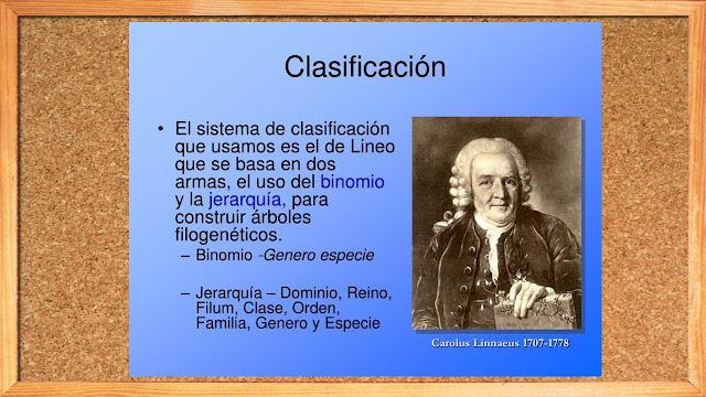 Carolus Linnaeus y los reinos de la naturaleza