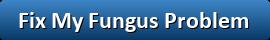 Fix_Fungus