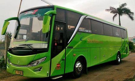 Bus Pariwisata Shelota
