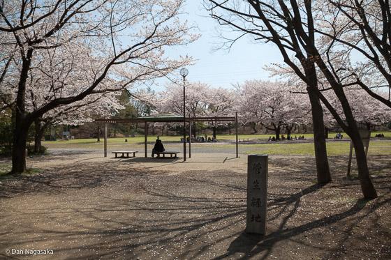 菅生緑地の東側地区入口