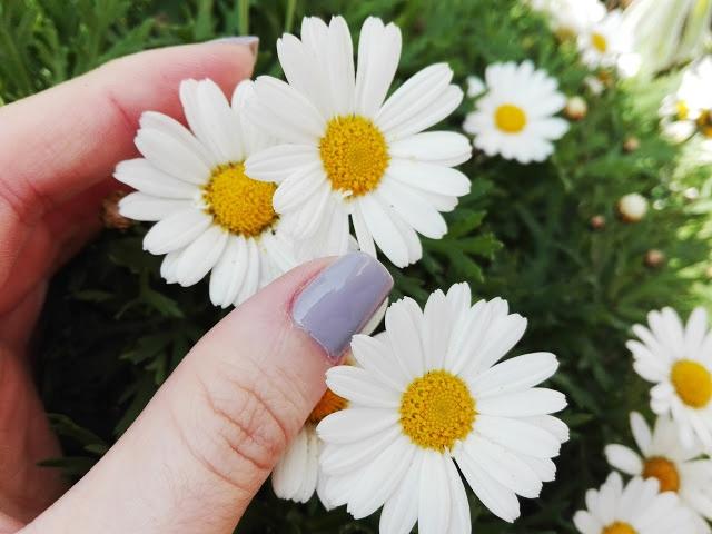 Verniz Essence the gel nail polish