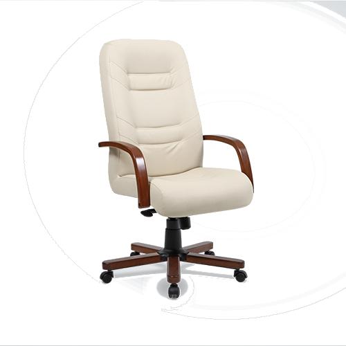 bürosit,ofis koltuğu,yönetici koltuğu,bürosit koltuk