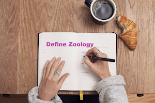 zoology definition