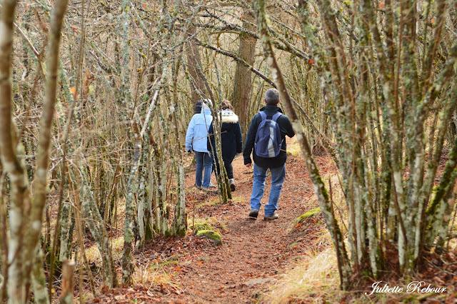 Randonnée dans le Cantal