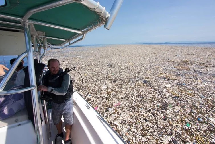 Horrifying Photos From Caribbean Reveal A Sea Of Plastic And Styrofoam