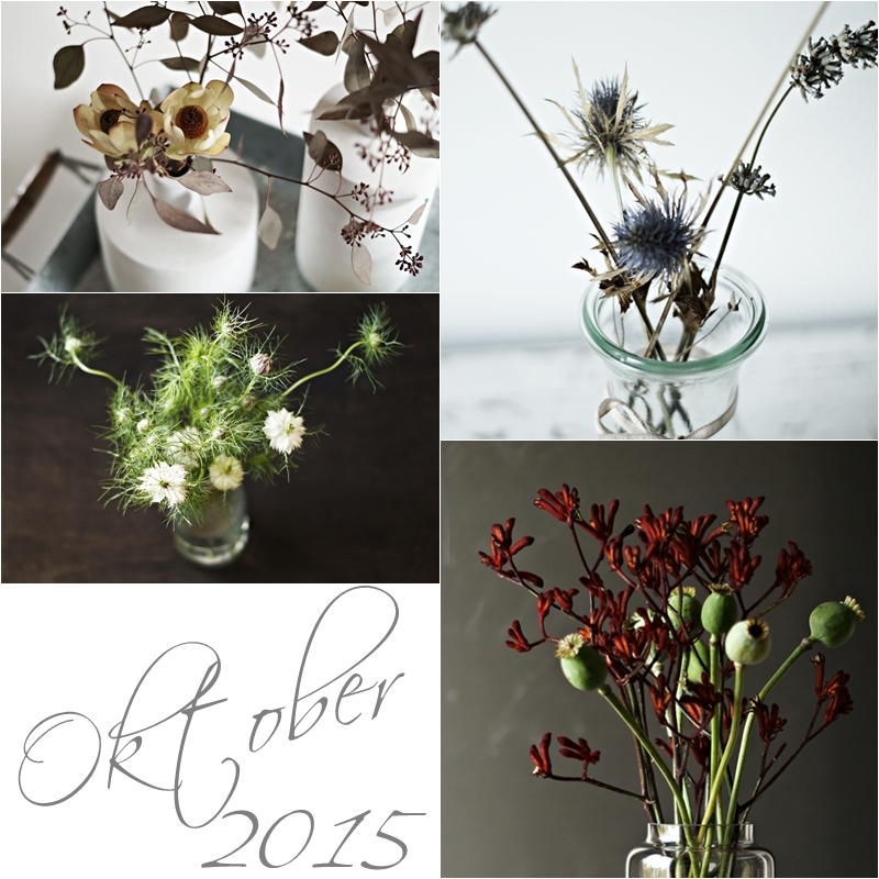 Blog + Fotografie by it's me! - Collage Friday Flowerday - Oktober 2015