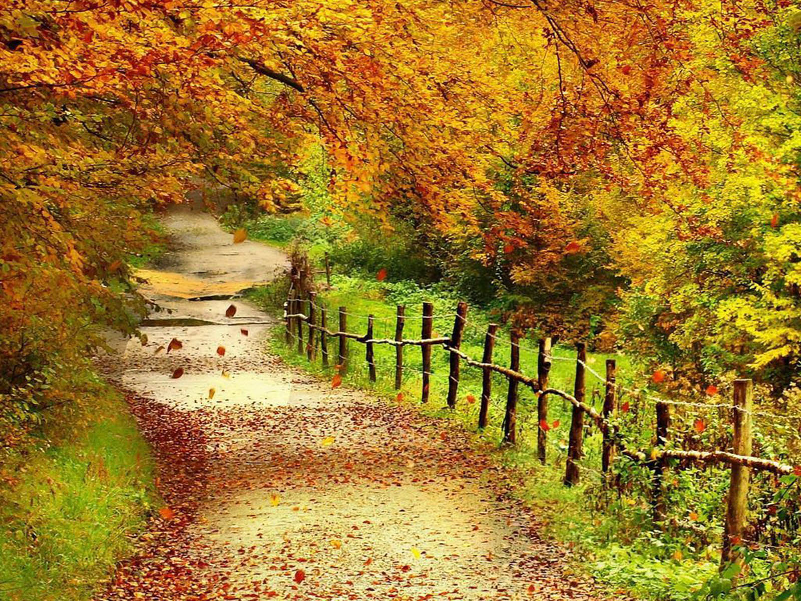 wallpapers: Beautiful Autumn Scenery Wallpapers